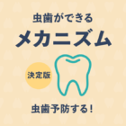 いまさら聞けない虫歯ができるメカニズム!菌や再発の謎と予防法