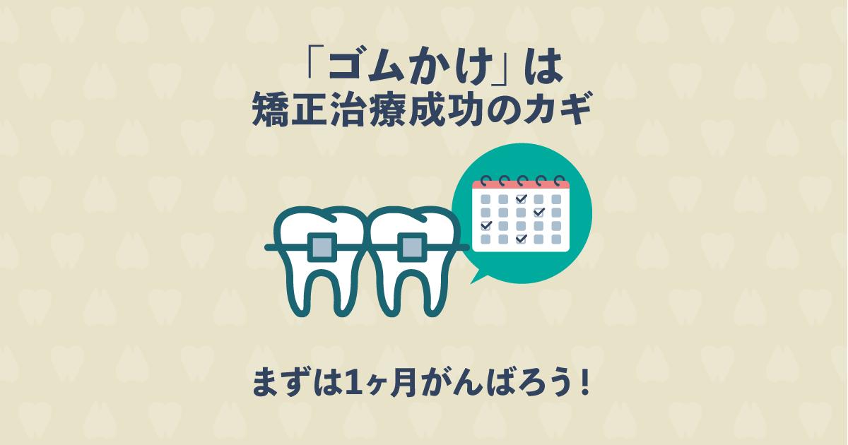 ゴムかけで歯並びが変化する?歯列矯正の仕上がりに驚きの差がつく!
