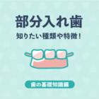 【基礎知識編】部分入れ歯とは?種類や特徴をわかりやすくご紹介!