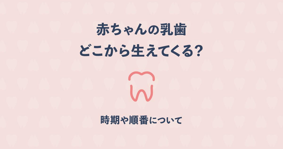 赤ちゃんの乳歯はどこから最初に生えてくる?時期や順番について