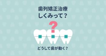 歯列矯正で歯が動くのは、なぜ?矯正の仕組みや治療の流れを徹底解説
